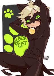 Znalezione obrazy dla zapytania black cat miraculous