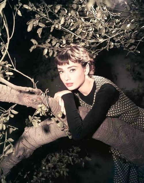 Sabrina I love this movie! The old one is soooo much better then the new one.