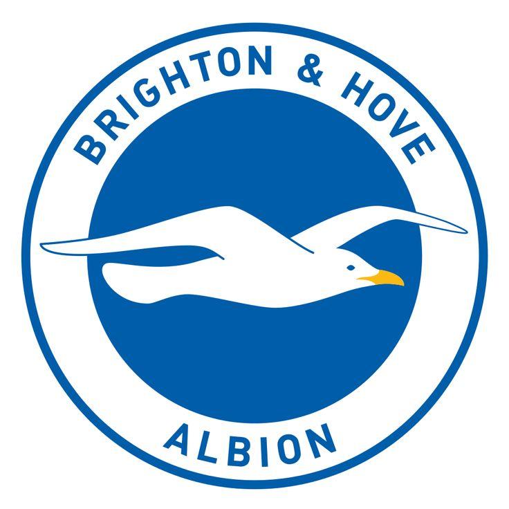 Brighton & Hove Albion FC, The Championship, Brighton & Hove, East Sussex, England
