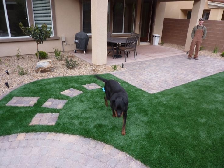 Mulch Backyard Dogs : Dog Friendly Backyard600450 Pixel, Turf Backyards, Dogs Stuff, Dogs