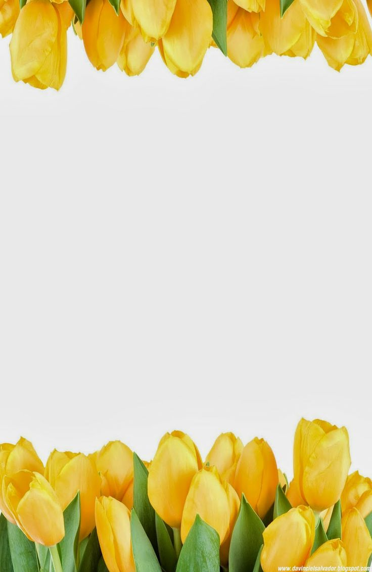 Yellow #Tulips #Invitation for your #Sweet15 and #Sweet16