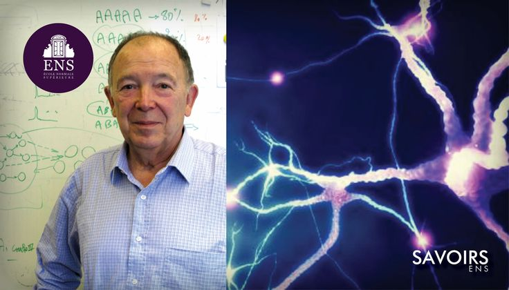 Jean-Pierre Changeux : L'Homme neuronal, trente ans après ?