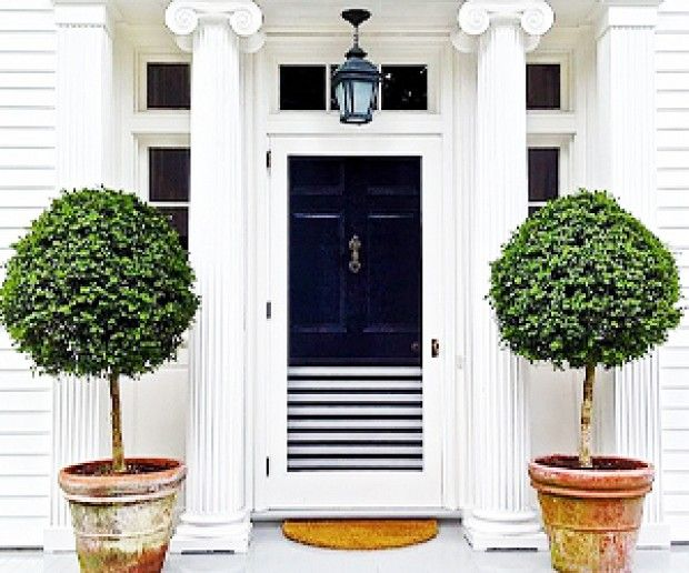 Best 25 front door plants ideas on pinterest front door for Potted plants by front door