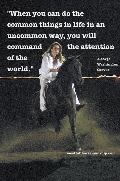Stacy Westfall...legend in the horse world. in my option at least:)