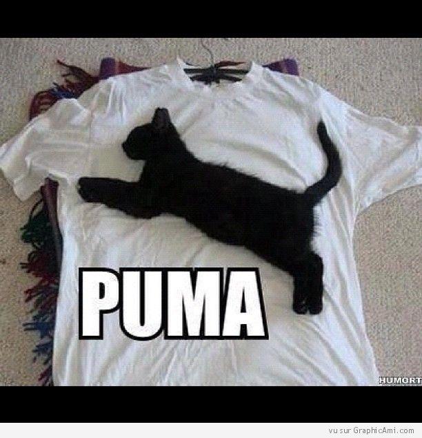 Un Chat représentant la Marque Puma sur un T-shirt - GraphicAmi