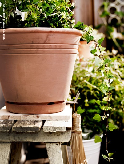 New FOTBLAD red clay pot with saucer  comes in 14 cm and 32 cm sizes.
