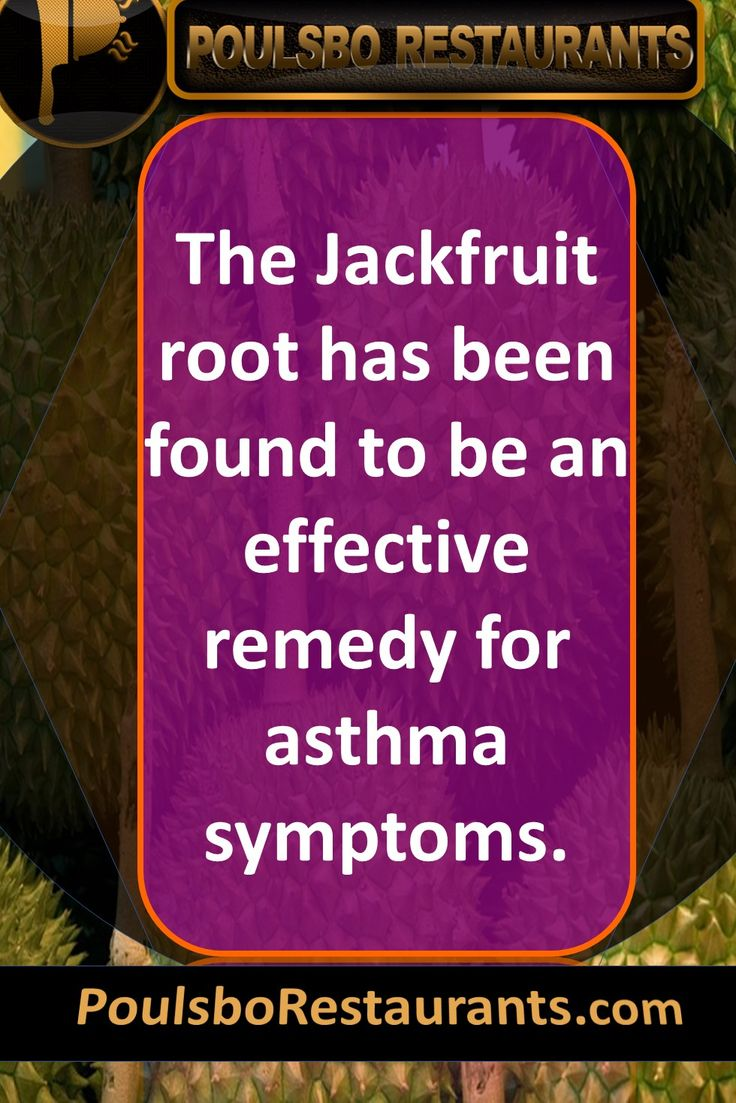 The Jackfruit root has been found to be an effective remedy for asthma symptoms. Food fact presented by PoulsboRestaurants.com