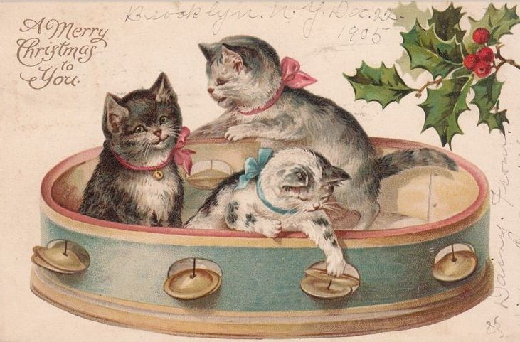 Kittens in Tambourine Victorian Christmas Postcard