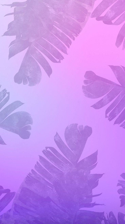 Wallpaper Background Purple Violet Hd Summer Gradient Palm