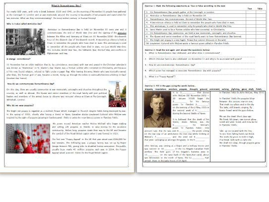 What is Remembrance Day? - Reading Comprehension Worksheet / Text