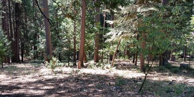 Wonderful treed lot located in Lilac Park, in the heart of Arnold. Great location to build your vacation getaway. Close to skiing, hiking, Big Trees State Park, White Pines Lake and so much more. Only 15 minutes to the quaint town of Murphys.