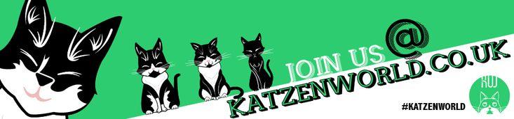 look at this amazing photo from Katzenworld  http://katzenworld.co.uk/2015/04/30/purrsday-poetry-my-kittie-cat-by-vickie-zisman/