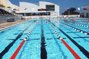 1000 images about my home town fort lauderdale florida on pinterest boats restaurant and for International swimming hall of fame pool
