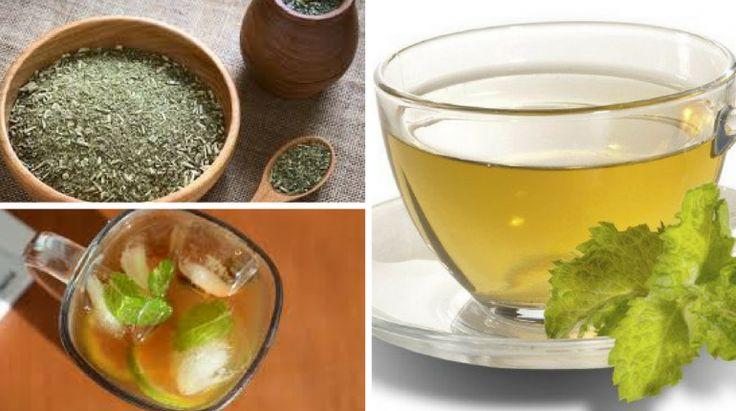 8+ Benefícios do Chá Mate para a Saúde