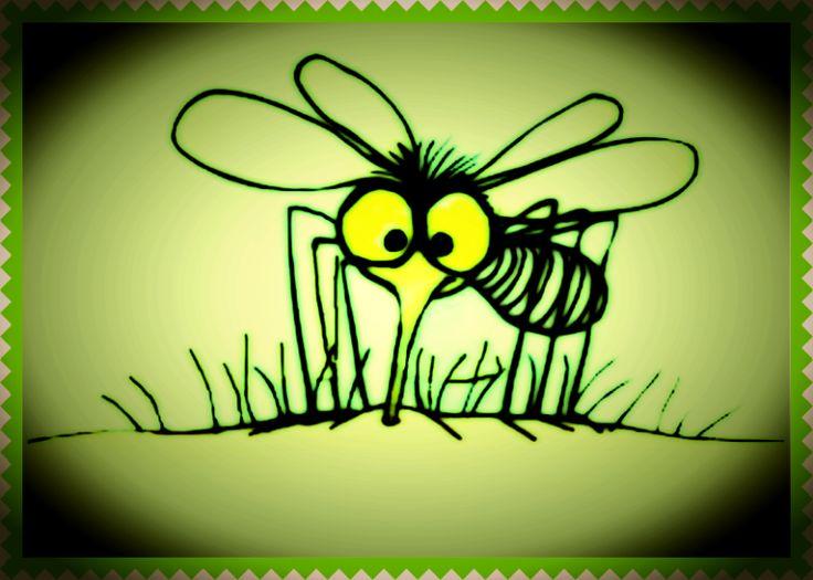 Szúnyogriasztó kence
