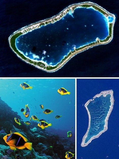 The Phoenix Islands are a group of 8 islands and several coral reefs located about halfway between Hawaii and Fiji in the south Pacific. The total land area of the islands is just 11 square miles (27.6 km²) and except for two dozen people (as of May 2010) living on Kanton, the largest of the group, the islands are uninhabited. Several attempts to settle or colonize the Phoenix Islands have been made over the past two centuries but all ended in failure with the last residents leaving in 1963.