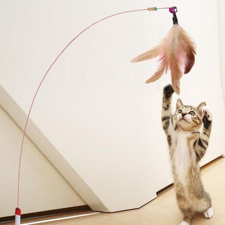 Mejores 89 imágenes de Cats en Pinterest | Productos para mascotas ...