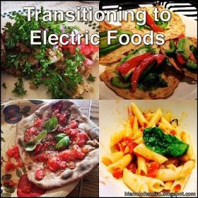 Transitioning to Electric Foods