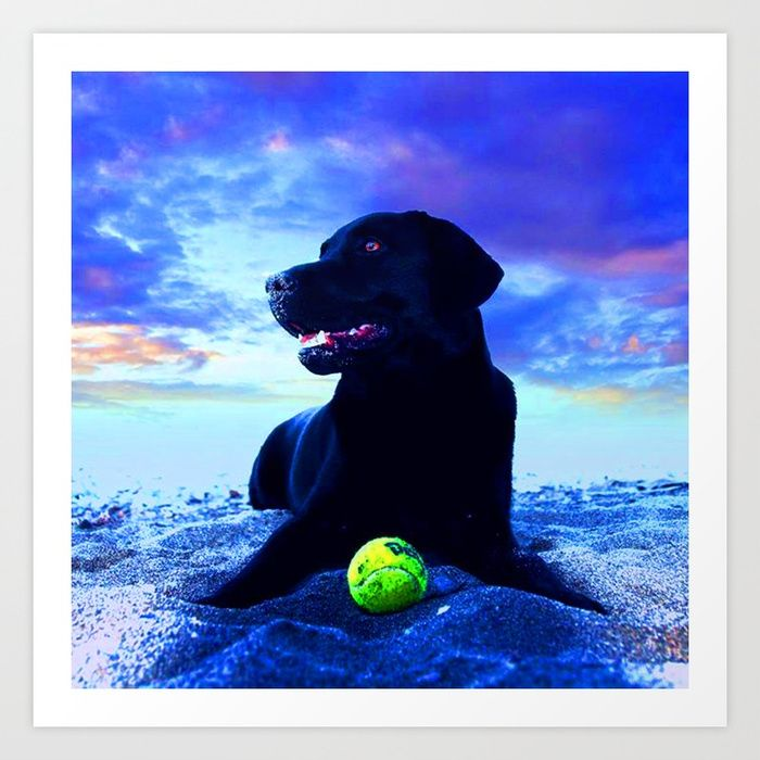 #Christmas #Spirit 25% OFF EVERYTHING #sales #Wallart #Tapestry #decor #homedeco #interior #instadecor #arquitetura #decoração #interiors #popart #colorful #funky #fancy #christmasart #colorful #XmasFever https://society6.com/product/ziggy-black-labrador-tpv_print?sku=s6-8097847p4a1v45#