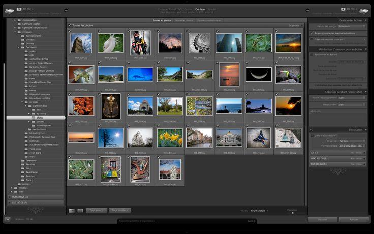 Les bases de Lightroom #2 : importer des photos
