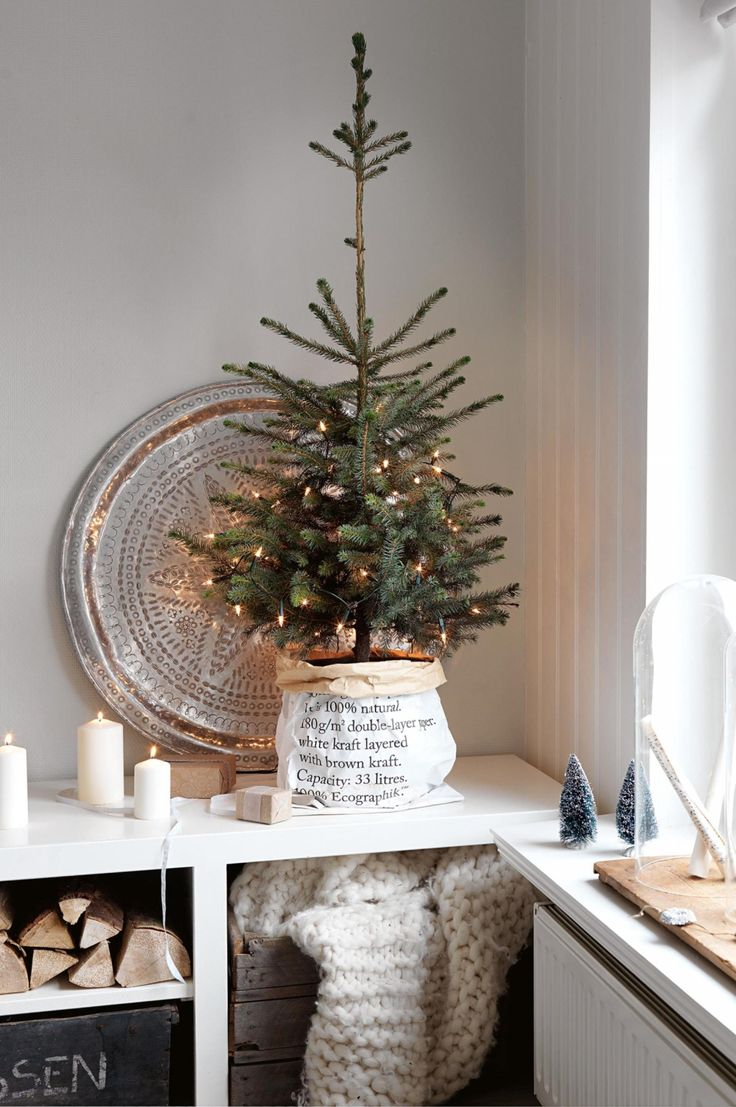 Tabletop christmas tree decorating ideas - Find This Pin And More On Merry Christmas Love This Sweet Little Christmas Tree With Sparkle Lights And White Decorations