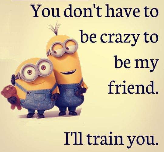 Funny Friendship Quotes You Dont Have To Be Crazy Funny