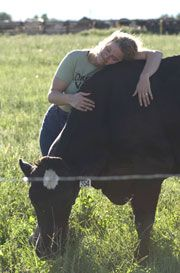 Humane Animal Treatment: A Cornerstone of Organic Valley Milk: Animal Treatments, Animal Advocate, Animal Pictures, Animal Welfare, Animal Care, Human Animal, Funny Animal