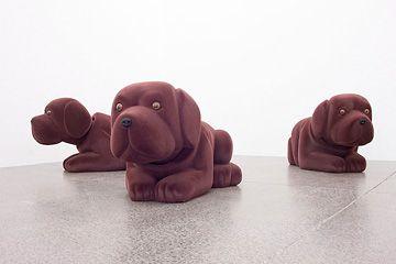 dogs1.jpg Steve Carr