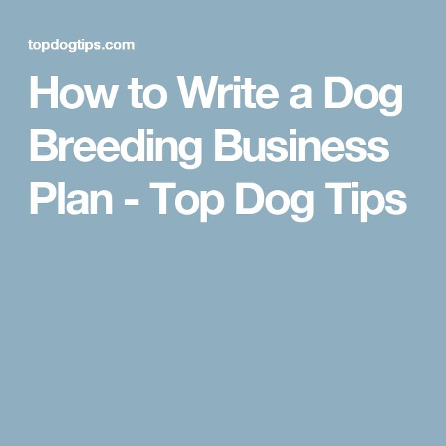 How to Write a Dog Breeding Business Plan - Top Dog Tips