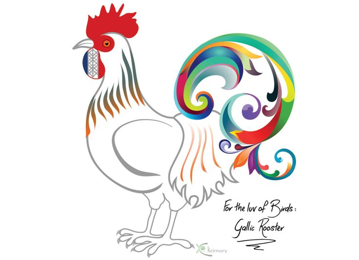 Colorful Bird Print   Poster: Gallic Rooster, symbol of France. Wall Art for nursery, kids room, home, office. Unique Original Illustration. by Kcimory on Etsy