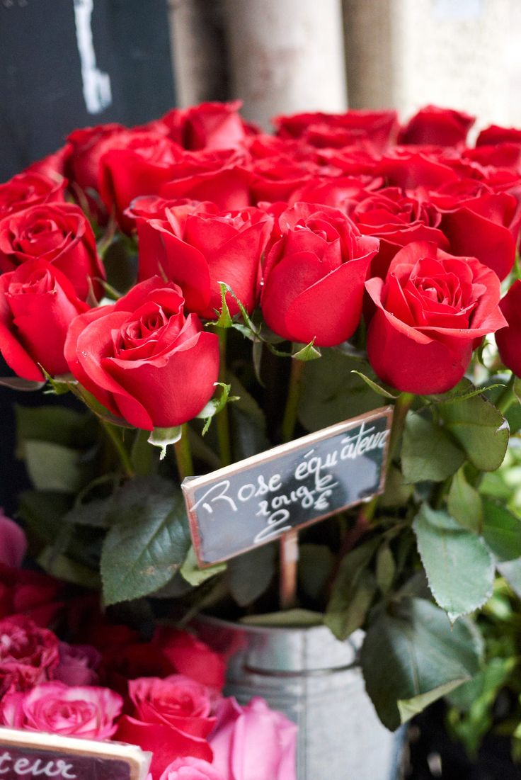 Pin by Melpo Siouti on Paris in Red Bunch of red roses