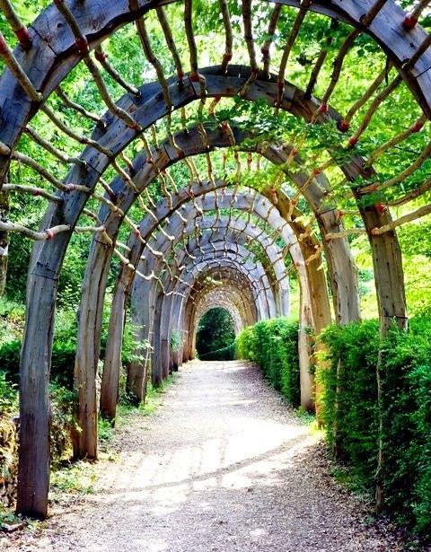 Garden Wood Trellis In Marqueyssac France