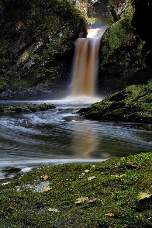 Ness Wood Fall, Derry, Northern Ireland Copyright: Arend Jan Schenning