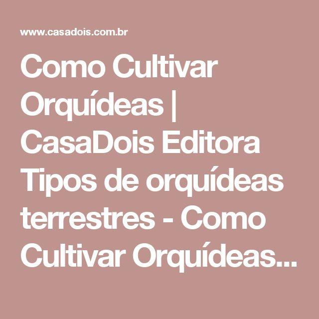 Como Cultivar Orquídeas | CasaDois Editora Tipos de orquídeas terrestres - Como Cultivar Orquídeas | CasaDois Editora