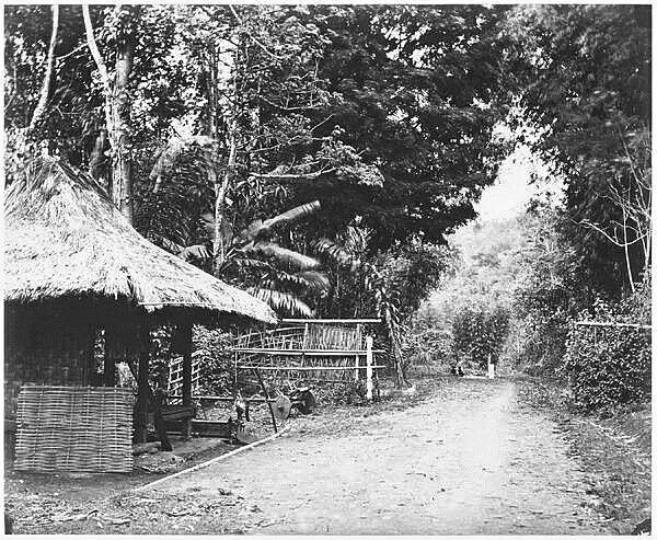 Weg tussen Tjisondari en Kopo ten zuiden van Bandoeng. Before 1880