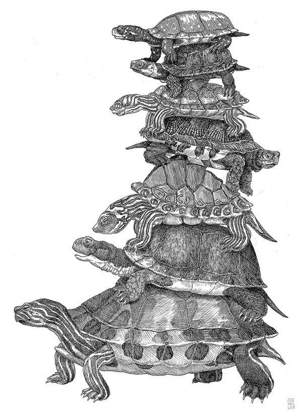 Endangered Turtles by ZOE KELLER, via Behance