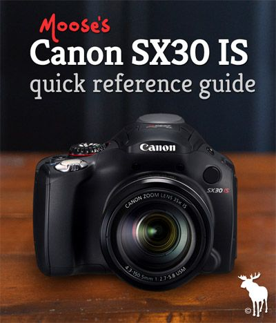 Canon SX30 IS Quick Guide: Tips & Resources for Beginners - Camera Tips for Beginners