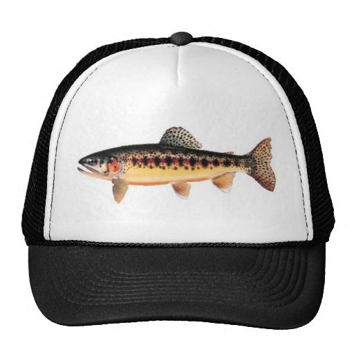 11 best hats images on pinterest trucker hats cap d for Mesh fishing hats