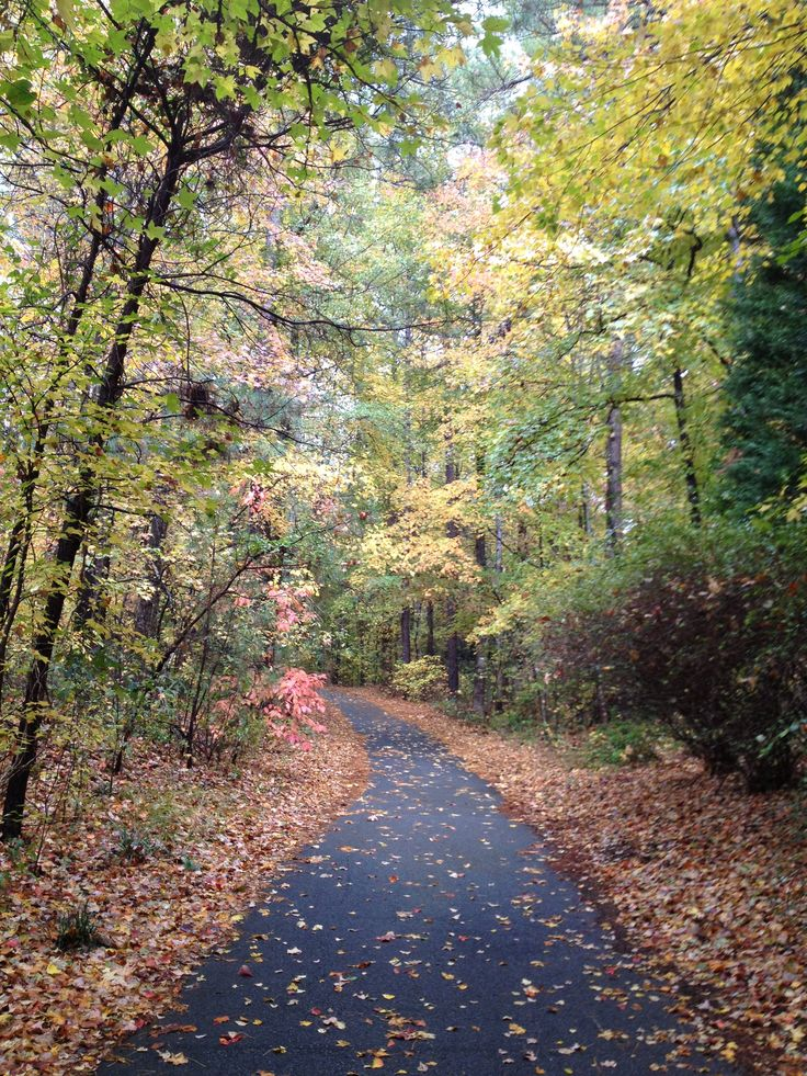 One day I will walk/run & ride a golf cart along these paths in Peachtree City, GA.