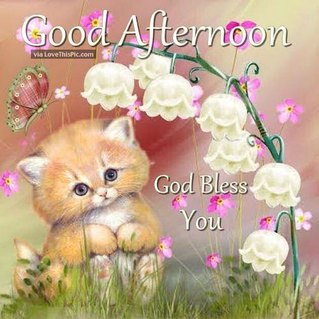 Good Afternoon God Bless You Cute Quote