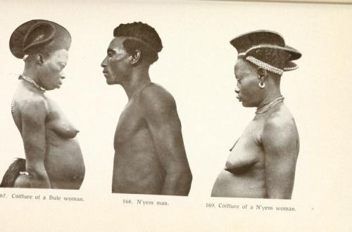 Hairstyles of the Bule and the N'yem, Cameroon From the Congo to the Niger and the Nile : an account of The German Central African expedition of 1910-1911 Source: Page Related Tags: Cameroon | Central Africa