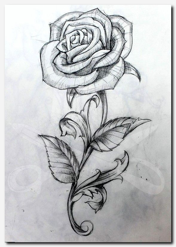 Unique Geometric Tattoo Rosetattoo Tattoo Girl With Dragon Tattoo Movie Series 10 Meaningful Tattoo I Rose Drawing Tattoo Rose Drawing Roses Drawing