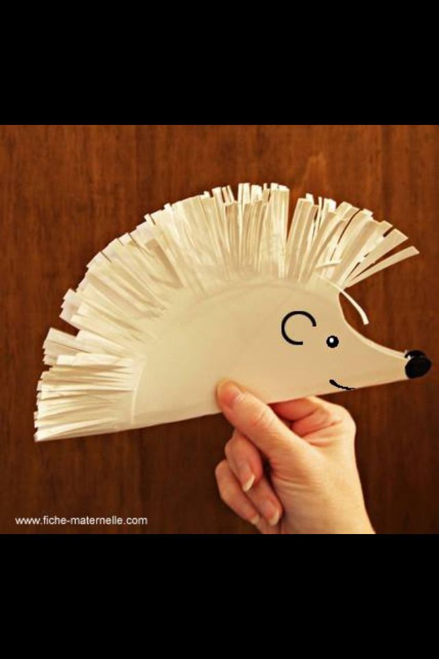 Paper plate hedge hog/porcupine -wacky wilderness. Little ones let them decorate.
