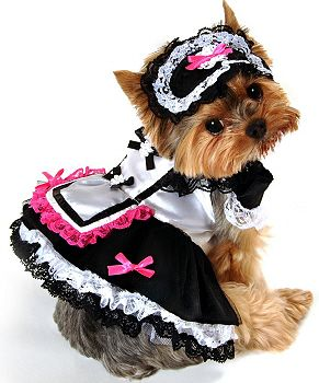 a tiered lace trim dress with pink bow accents attached petticoat and headpiece find this pin and more on dog halloween - Dogs With Halloween Costumes On