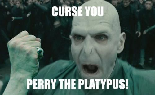 lolVoldemort, Geek, Laugh, Stuff, Awesome, Funny Phineas And Ferb, Harry Potter, So Funny, Perry The Platypus