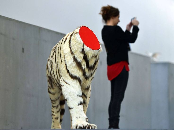 """18 December 2014 A woman stands next to a decapitated tiger, an art piece by Chinese artist Huang Yong Ping at the exhibition """"Bugarach"""" at the Maxxi museum in Rome. Bugarach is the name of a village in the French Pyrenees, since the 1970s, Bugarach has been a place of pilgrimage for numerous followers of New Age esotericism. The exhibition will run until 24 May 2015"""