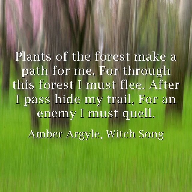 Plants of the forest make a path for me, For through this forest I must flee. After I pass hide my trail, For an enemy I must quell.