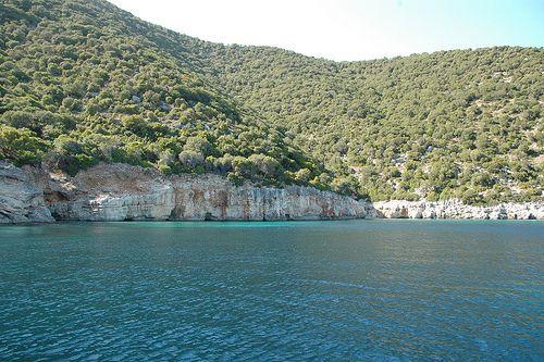 Wild landscape, tranquil sea