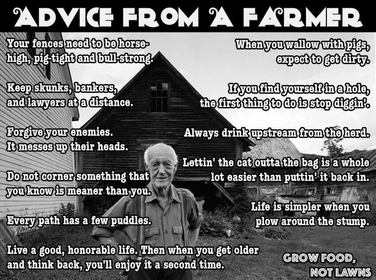 advices from an old farmer You may have heard some of these, but these farming quotes are good to remember even if you're off the farm enjoy your fences need to be horse-high, pig-tight and bull-strong.