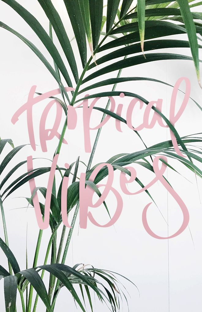 Tropical vibes inspiration- love the candy floss pink against the palm tree! Gives the image a vintage beach feel.